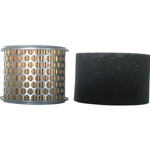 Picture of Honda Replacement Air Filter GX240 & GX270