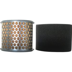Picture of Honda Replacement Air Filter GX340 & GX390