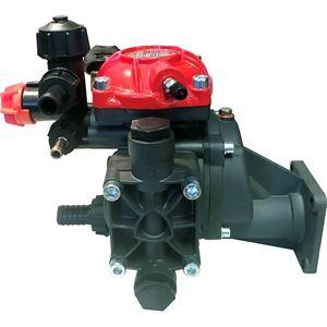 Picture of AR252-GR-GCI3/4 6.5 GPM 362 PSI Diaphragm Pump, Gearbox & Control Unit