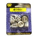 Picture of General Pump KIT15066 Valve (6)
