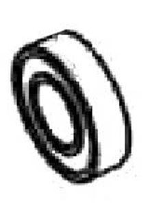 Picture of Delavan 7-Roller Ball Bearing