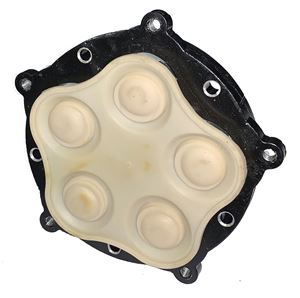 Picture of Everflo Diaphragm Assembly 4 GPM
