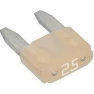 Picture of Everflo EF Mini Blade Replacement Fuse 25A 3-7 GPM