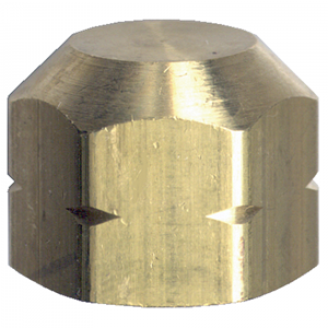 Picture of 3/4 FPT Brass Cap